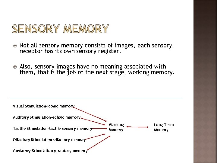 Not all sensory memory consists of images, each sensory receptor has its own