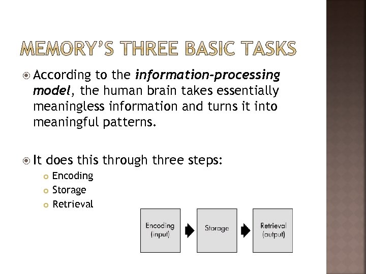 According to the information-processing model, the human brain takes essentially meaningless information and
