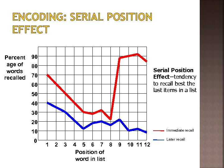 ENCODING: SERIAL POSITION EFFECT Percent age of words recalled 90 80 Serial Position Effect--tendency