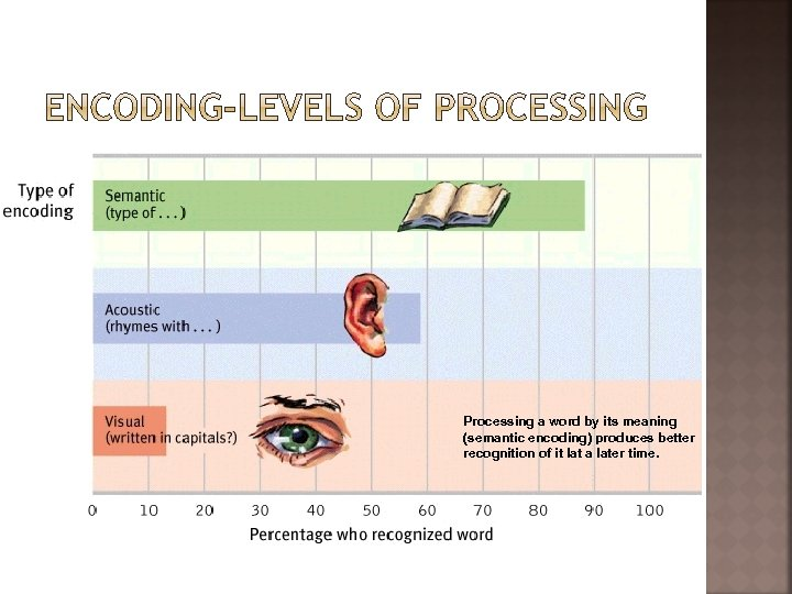 Processing a word by its meaning (semantic encoding) produces better recognition of it lat