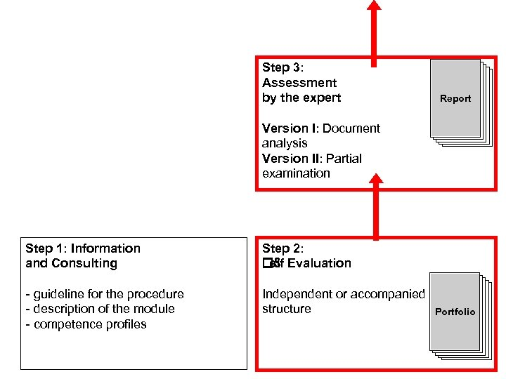Step 3: Assessment by the expert Dossier Report Dossier Version I: Document analysis Version