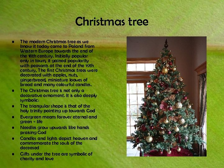 Christmas tree • • The modern Christmas tree as we know it today came