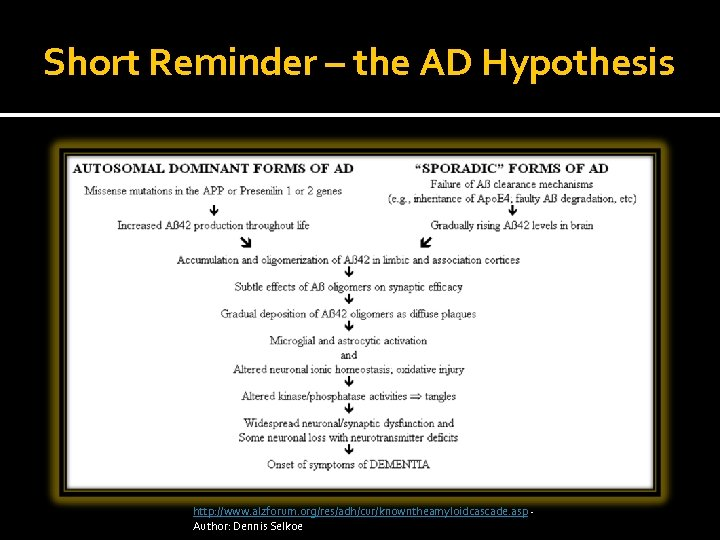 Short Reminder – the AD Hypothesis http: //www. alzforum. org/res/adh/cur/knowntheamyloidcascade. asp Author: Dennis Selkoe