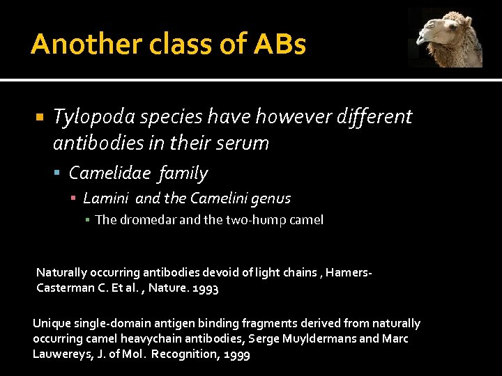 Another class of ABs Tylopoda species have however different antibodies in their serum Camelidae