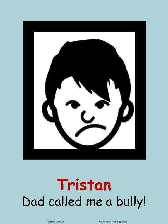 Tristan Dad called me a bully! Joel Shaul, LCSW Autism. Teaching. Strategies. com