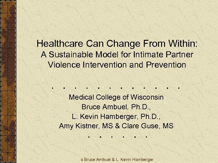 Healthcare Can Change From Within: A Sustainable Model for Intimate Partner Violence Intervention and