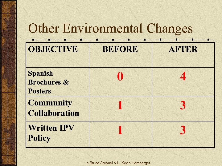 Other Environmental Changes OBJECTIVE BEFORE AFTER Spanish Brochures & Posters 0 4 Community Collaboration
