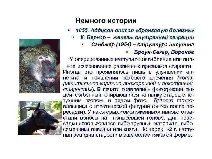 Немного истории • 1855. Аддисон описал «бронзовую болезнь» • К. Бернар – железы внутренней