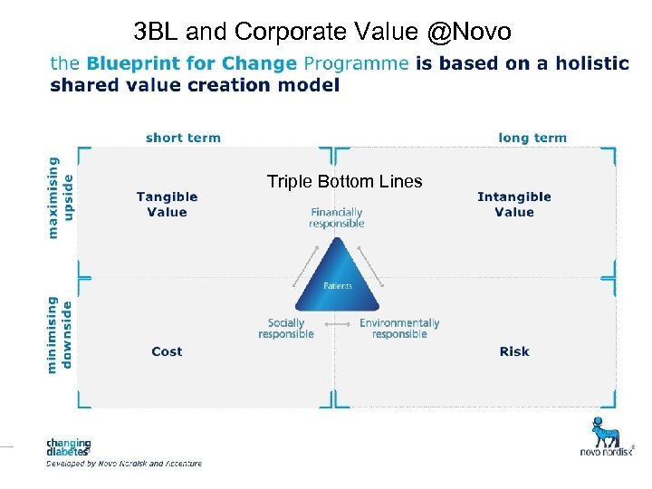 Ⓒ 2008. Toro Hitotsubashi 3 BL and Corporate Value @Novo Triple Bottom Lines
