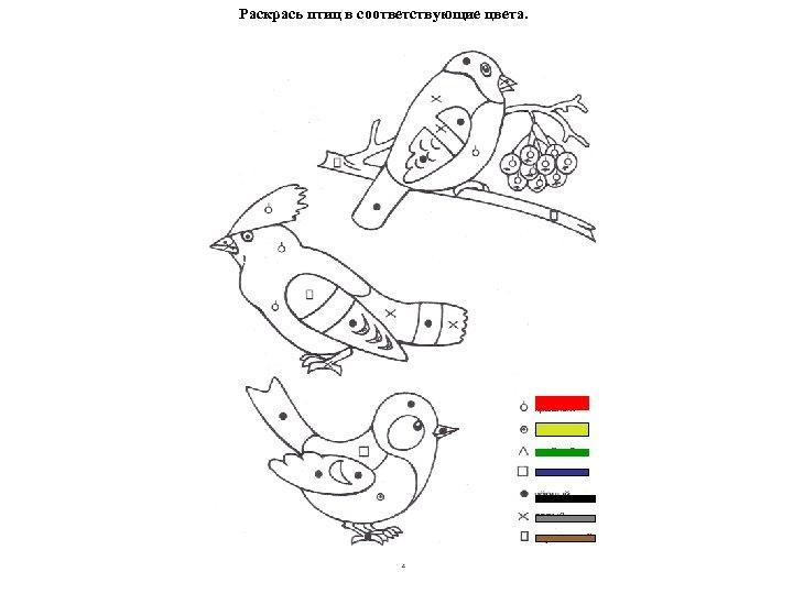 Раскрась птиц в соответствующие цвета.