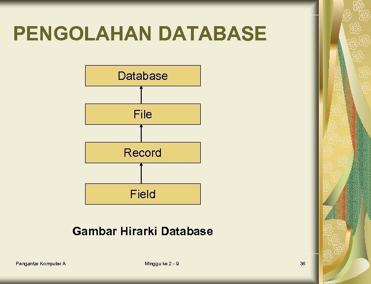 PENGOLAHAN DATABASE Database File Record Field Gambar Hirarki Database Pengantar Komputer A Minggu ke
