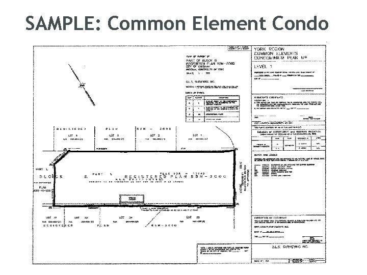 SAMPLE: Common Element Condo