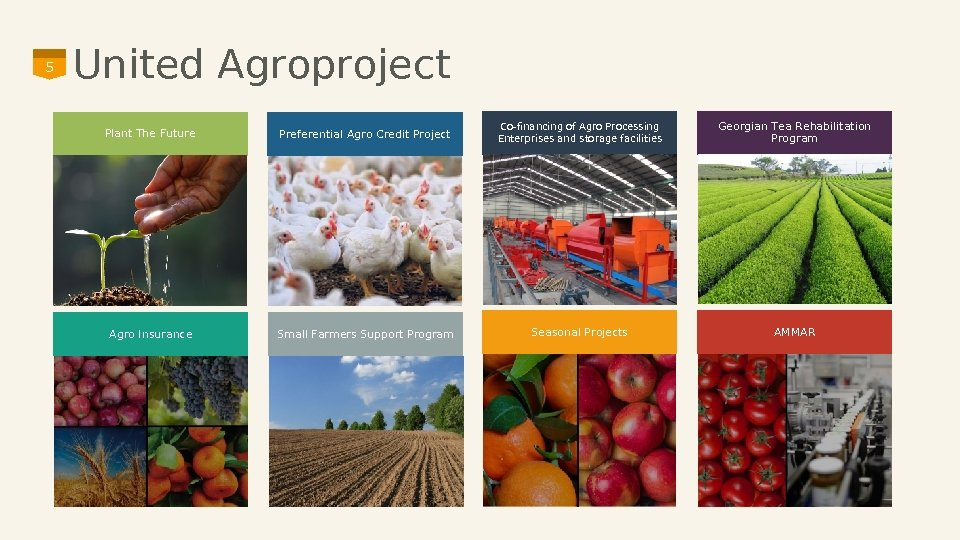 5 United Agroproject Plant The Future Preferential Agro Credit Project Co-financing of Agro Processing