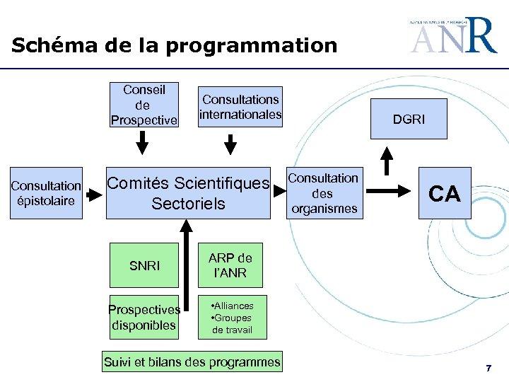 Schéma de la programmation Conseil de Prospective Consultation épistolaire Consultations internationales Comités Scientifiques Sectoriels