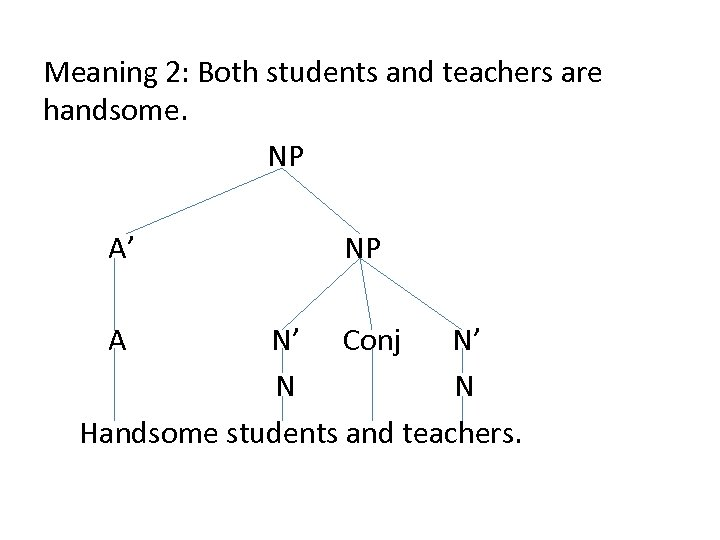 Meaning 2: Both students and teachers are handsome. NP A' A NP N' Conj