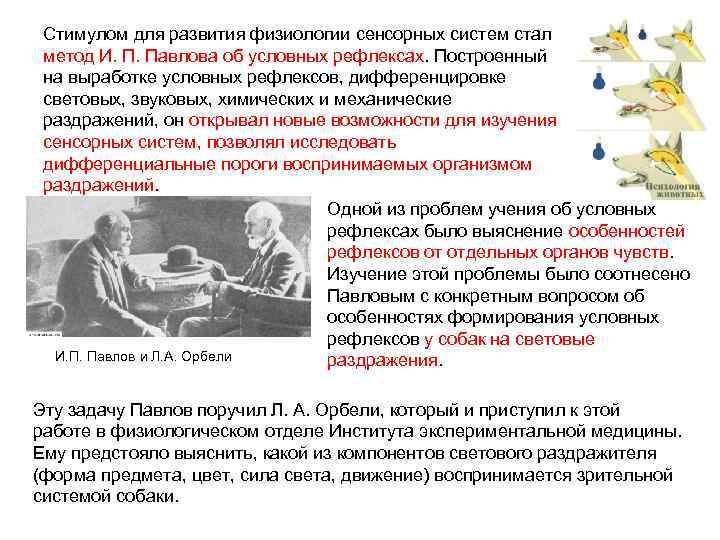 Стимулом для развития физиологии сенсорных систем стал метод И. П. Павлова об условных рефлексах.