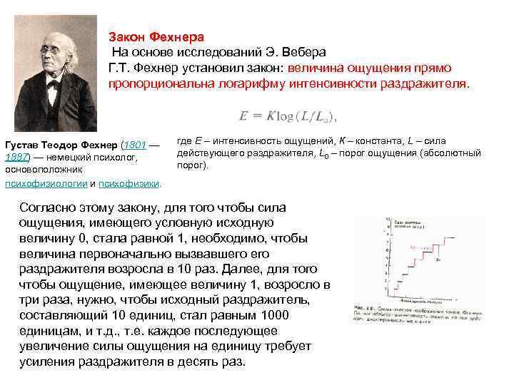 Закон Фехнера На основе исследований Э. Вебера Г. Т. Фехнер установил закон: величина ощущения