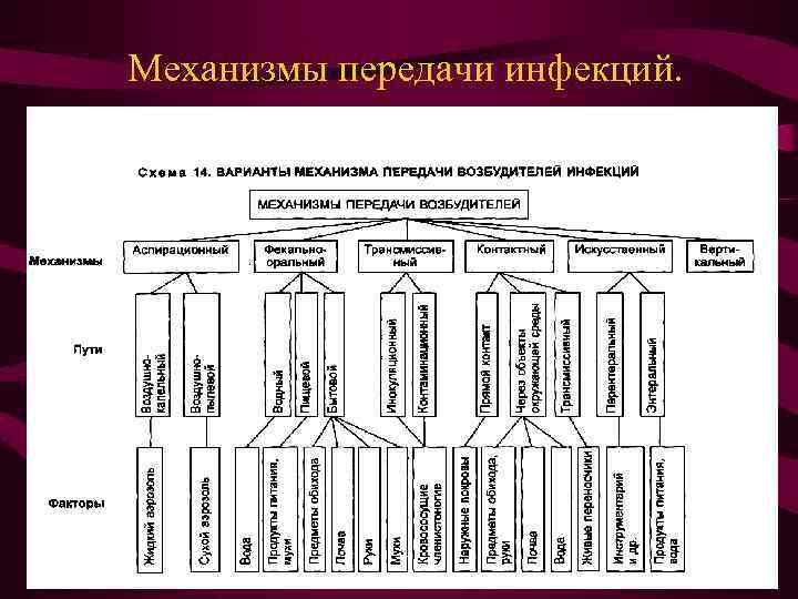 Механизмы передачи инфекций.