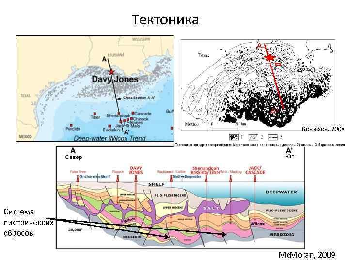 Тектоника А А 1 Конюхов, 2008 Система листрических сбросов Mc. Moran, 2009
