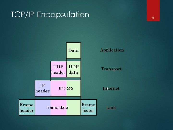 TCP/IP Encapsulation 65