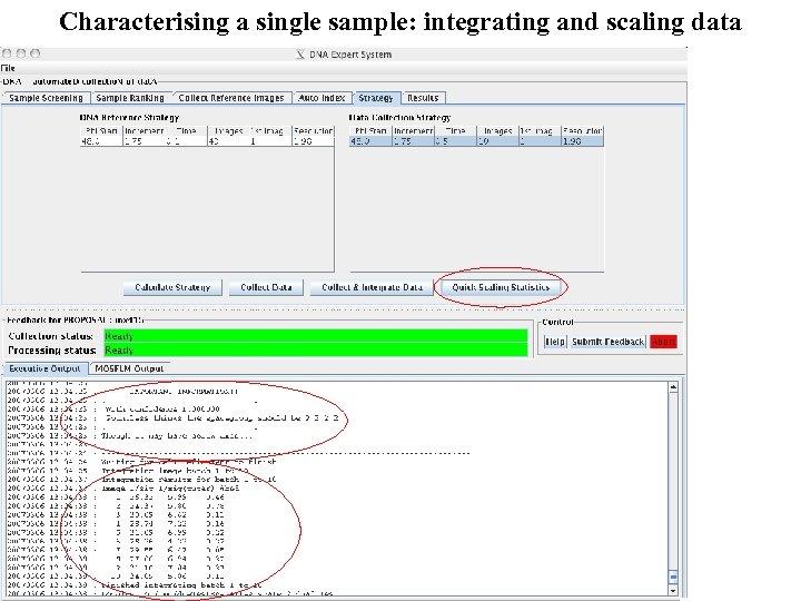 Characterising a single sample: integrating and scaling data