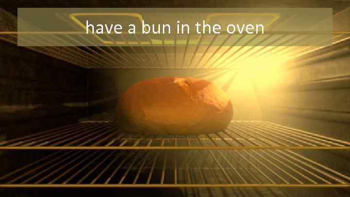 have a bun in the oven