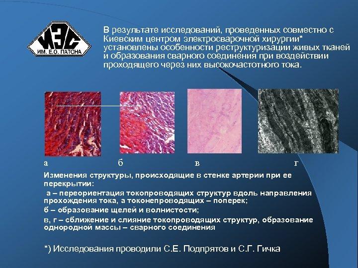 В результате исследований, проведенных совместно с Киевским центром электросварочной хирургии* установлены особенности реструктуризации живых