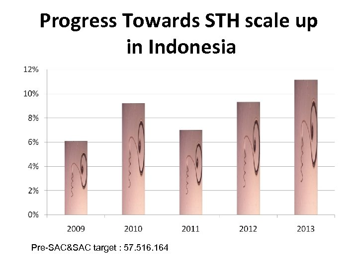 Progress Towards STH scale up in Indonesia Pre-SAC&SAC target : 57. 516. 164