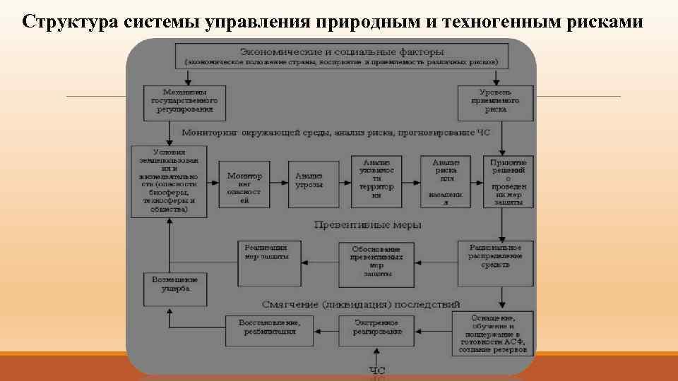 Структура системы управления природным и техногенным рисками