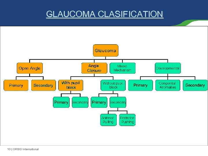 GLAUCOMA CLASIFICATION 10 | ORBIS International