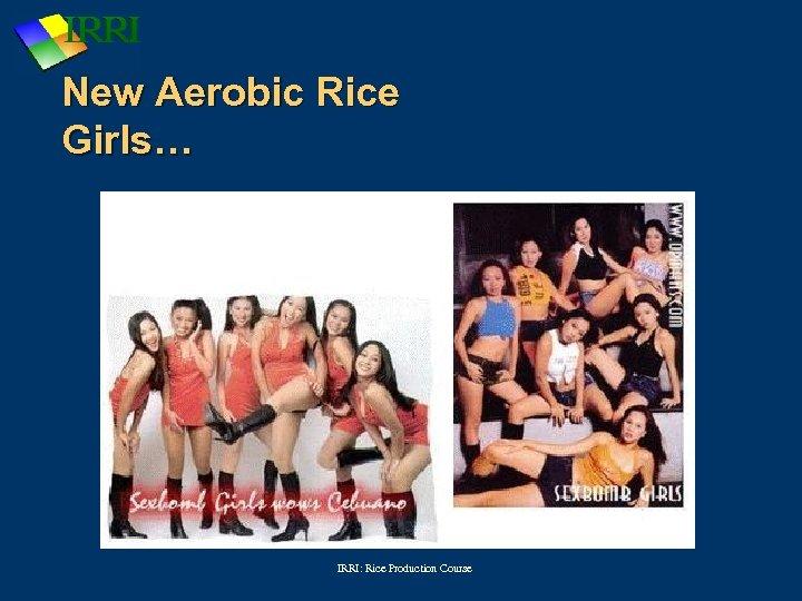 New Aerobic Rice Girls… IRRI: Rice Production Course