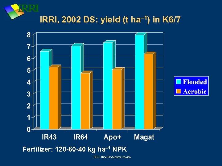 IRRI, 2002 DS: yield (t ha-1) in K 6/7 Fertilizer: 120 -60 -40 kg