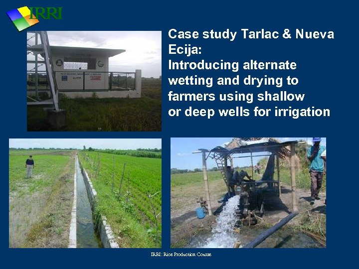 water saving rice production systems - 720×540