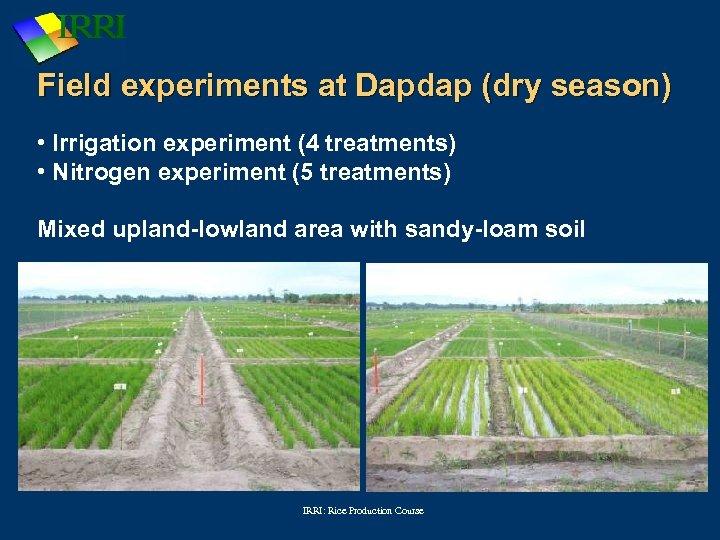 Field experiments at Dapdap (dry season) • Irrigation experiment (4 treatments) • Nitrogen experiment