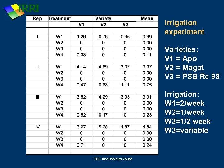 Irrigation experiment Varieties: V 1 = Apo V 2 = Magat V 3 =