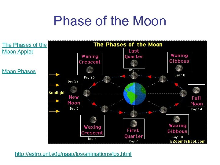 Phase of the Moon The Phases of the Moon Applet Moon Phases http: //astro.