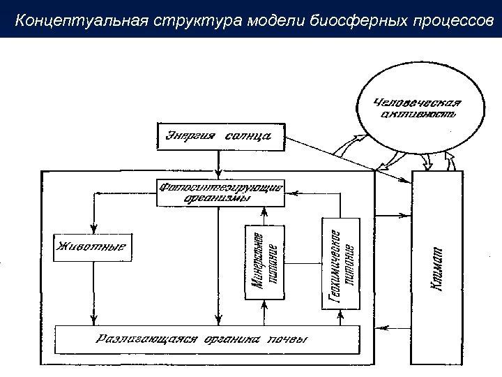 Концептуальная структура модели биосферных процессов