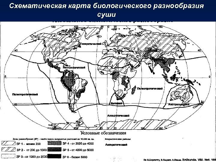 Схематическая карта биологического разнообразия суши