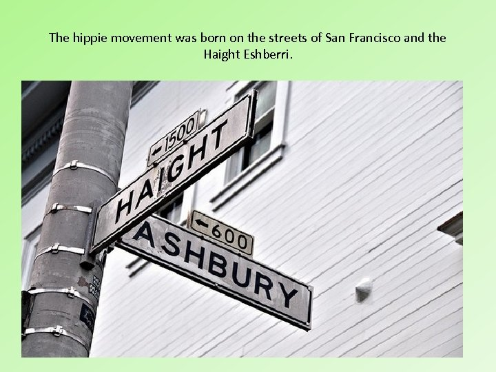 The hippie movement was born on the streets of San Francisco and the Haight