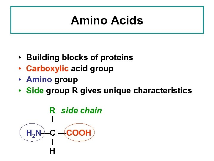 Amino Acids • • Building blocks of proteins Carboxylic acid group Amino group Side