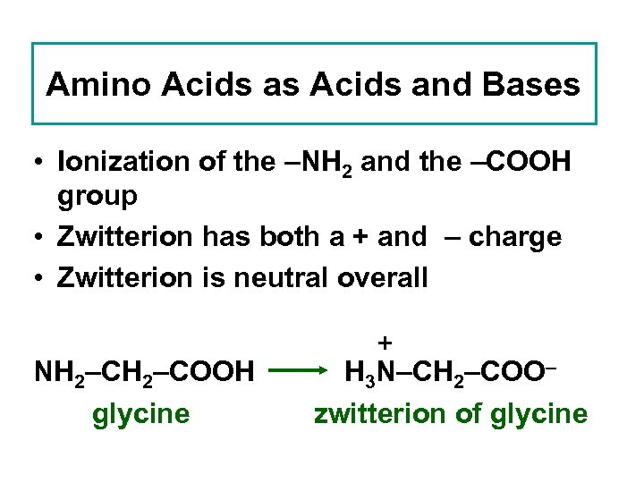 Amino Acids as Acids and Bases • Ionization of the –NH 2 and the