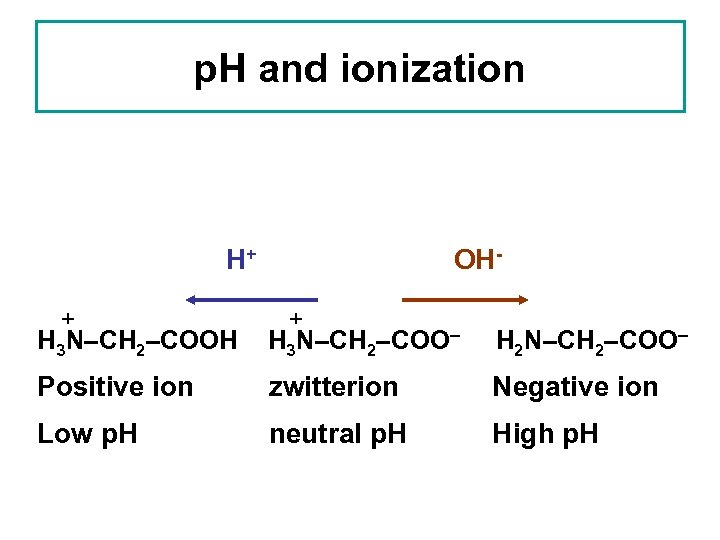 p. H and ionization H+ + OH- + H 3 N–CH 2–COOH H 3