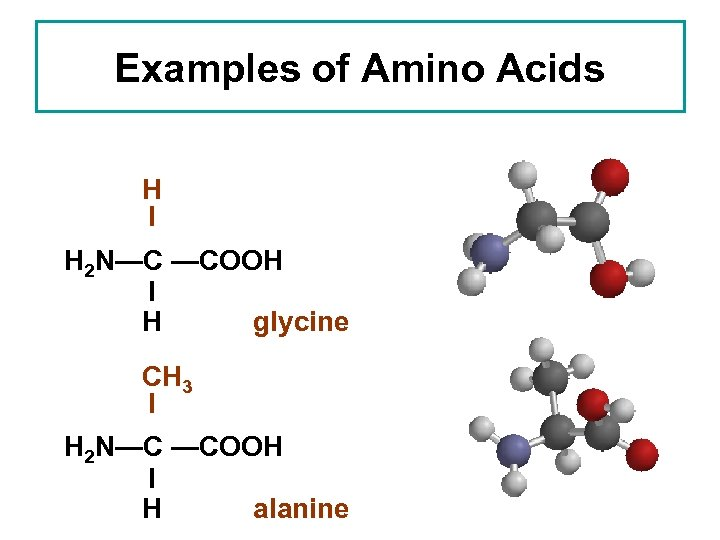 Examples of Amino Acids H I H 2 N—C —COOH I H glycine CH