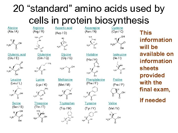 "20 ""standard"" amino acids used by cells in protein biosynthesis Alanine (Ala / A)"