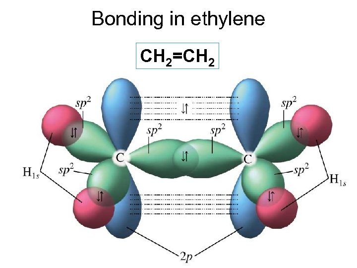Bonding in ethylene CH 2=CH 2