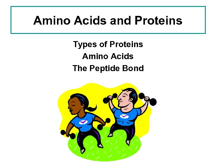 Amino Acids and Proteins Types of Proteins Amino Acids The Peptide Bond