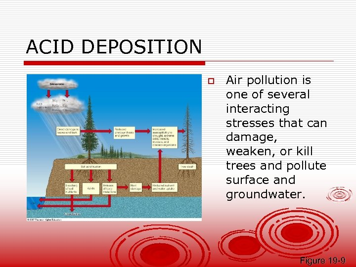 ACID DEPOSITION o Air pollution is one of several interacting stresses that can damage,