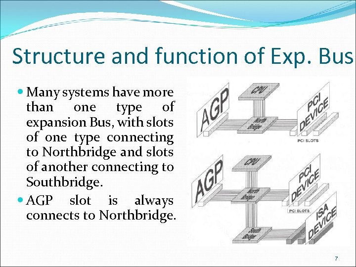 Structure and function of Exp. Bus Many systems have more than one type of