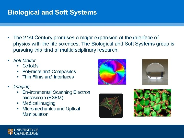 Biological and Soft Systems • The 21 st Century promises a major expansion at
