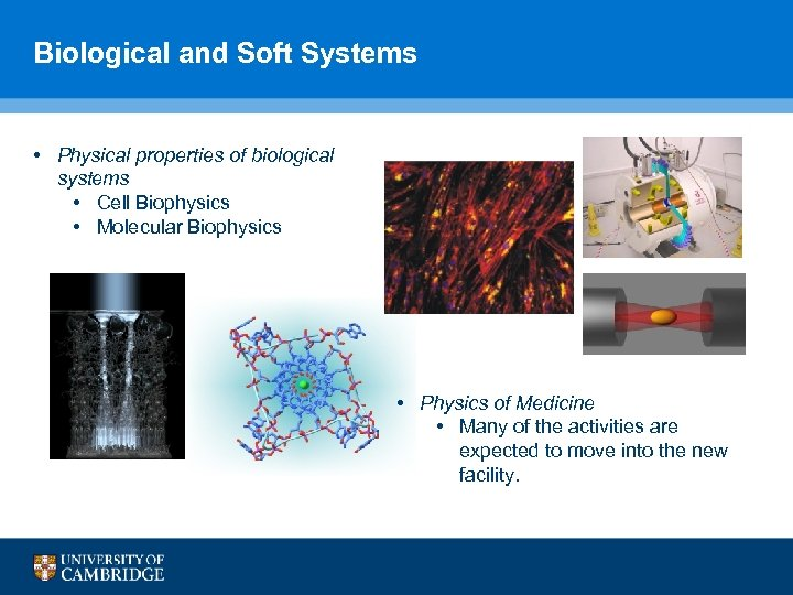 Biological and Soft Systems • Physical properties of biological systems • Cell Biophysics •